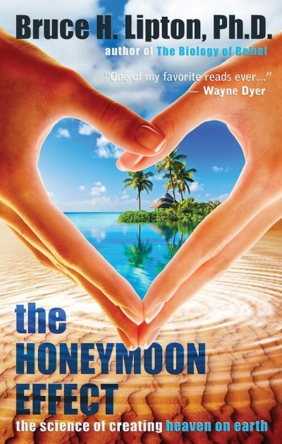 The Honeymoon Effect by Bruce Lipton (Audio Book)